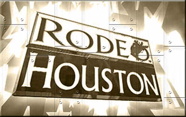 Houston Livestock Show And Rodeo Houston Tx Lone Star