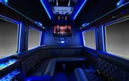 Sprinter Limousine interior 2